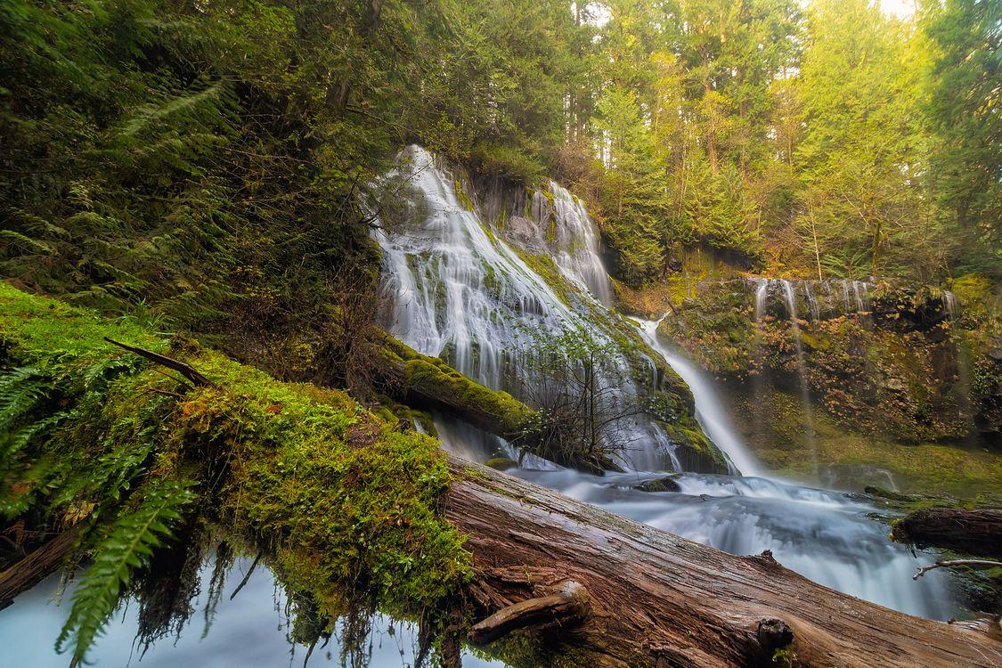 Фото бесплатно Водопад Пантера-Крик в Национальном лесу Гиффорд Пинчот, штат Вашингтон, водопад, осень, лес, деревья, природа, пейзаж, пейзажи - скачать на рабочий стол