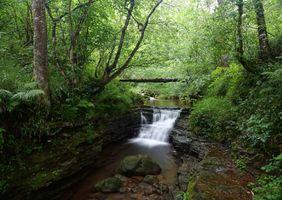 Бесплатные фото водопад,скалы,водоём,речка,лес,деревья,природа