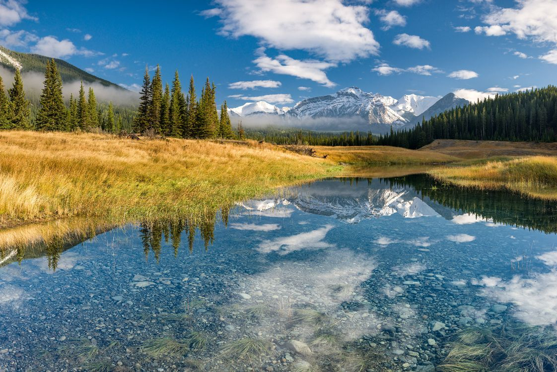 Обои Канада, Альберта, Banff National Park, горы, деревья, водоём, озеро, природа, пейзаж на телефон | картинки пейзажи