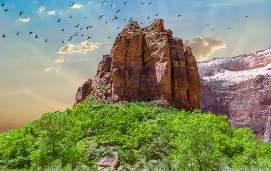 Заставки Zion National Park, Техас, каньон