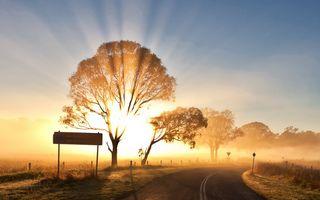 Фото бесплатно яркий, свет, лучи солнца