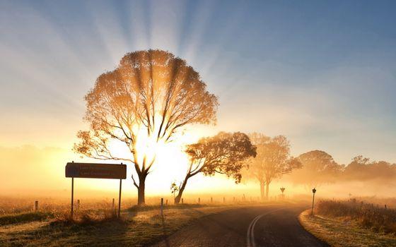 Заставки яркий, свет, лучи солнца