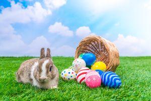 Фото бесплатно Христос воскрес, пасхальный заяц, пасхальные яйца