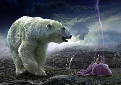 Фото бесплатно млекопитающее, на открытом воздухе, природа