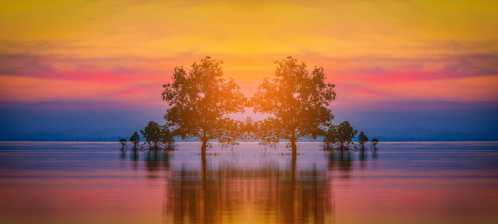 Фото бесплатно Силуэт дерева, море, закат - на рабочий стол