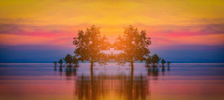 Заставки Силуэт дерева, море, закат