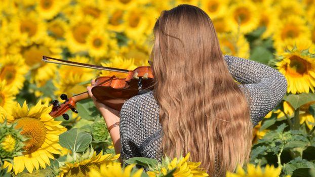 Длинноволосая скрипачка в подсолнухах · бесплатное фото