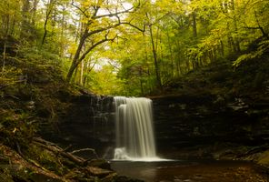 Водопад в лесу · бесплатное фото