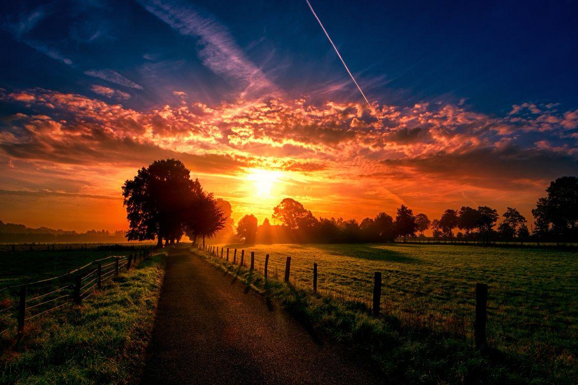 Фото бесплатно Хартефельд, Гельдерн, Дюссельдорф, Германия, закат солнца, дорога, поле, дерево, пейзаж, пейзажи