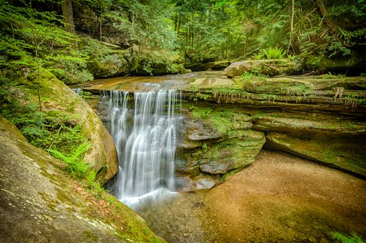 Фото бесплатно Hidden Falls, Hocking Hills State Park, Ohio, лес, деревья, водопад, скалы, природа, пейзаж