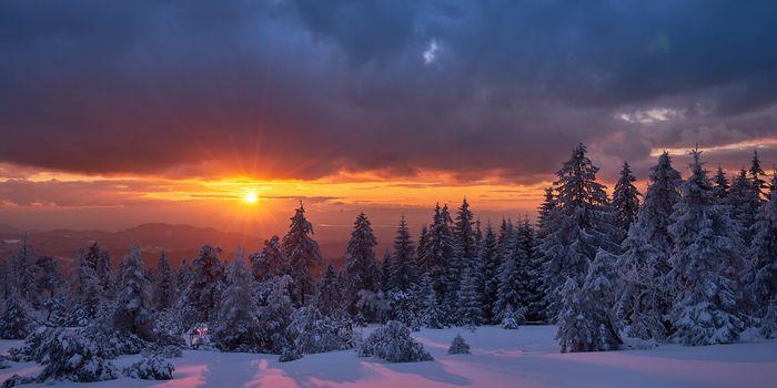Фото бесплатно Германия, Шварцвальд, зима