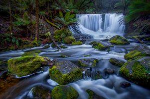 Фото бесплатно Horseshoe Falls, ил, мох