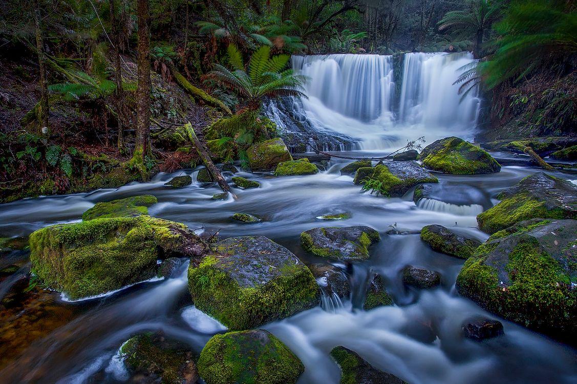 Фото бесплатно Horseshoe Falls, ил, мох - на рабочий стол