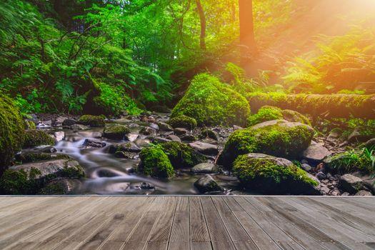 Фото бесплатно Лесной поток, деревянная дорожка, лес
