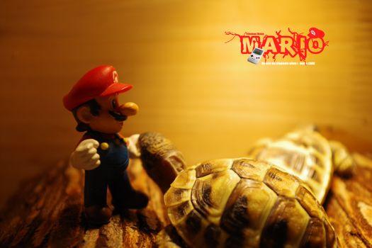 Фото бесплатно Супер Марио, фривольное зрение, видеоигры
