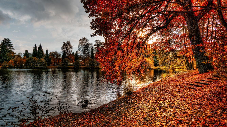 Осенний берег реки · бесплатное фото