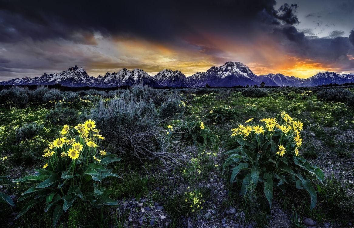 Photos for free Grand Teton National Park, Wyoming, Rocky Mountains - to the desktop