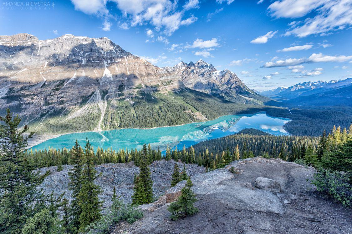 Фото бесплатно Peyto Lake, Banff National Park, Alberta, Canada, каньон, озеро, река, елки, летний день, горы, деревья, небо, облака, лес, природа, пейзажи