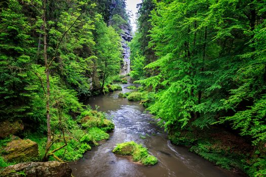 Бесплатные фото Чехия,Богемия,Дечинский район,Река Каменице,Ущелье Каменице
