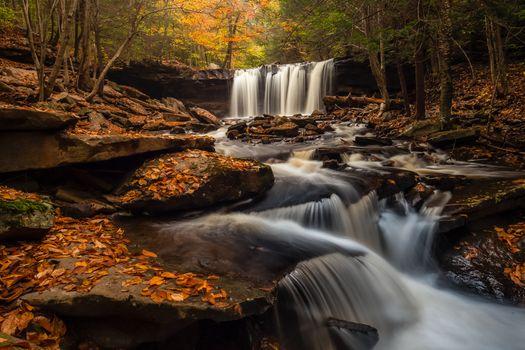 Фото бесплатно Рикеттс Glen State Park в Пенсильвании, осенние цвета, Государственный парк Ricketts Глен