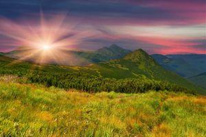 Фото бесплатно вечер, поле, трава