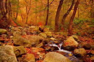 Заставки осенний водопад, краски осени, осенние краски