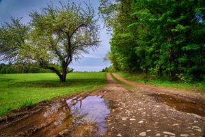 Фото бесплатно пейзаж, дорога, лужа