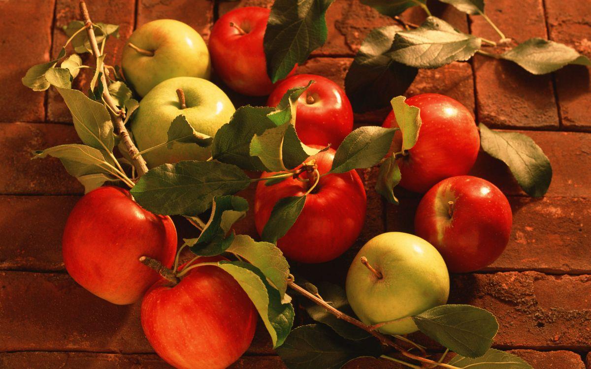 Фото бесплатно яблоки, кирпич, листочки, веточки, еда, фрукт, бутерброд, еда