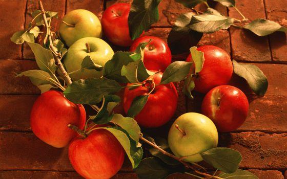 Фото бесплатно яблоки, кирпич, листочки