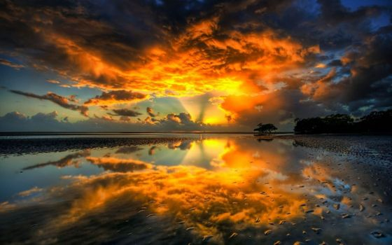 Photo free beach, nature, reflections