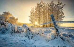 Фото бесплатно солнечный свет, закат, зима