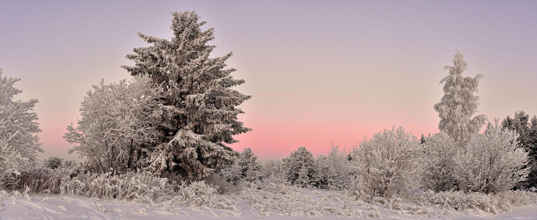 Фото бесплатно панорама, снег, зима - на рабочий стол