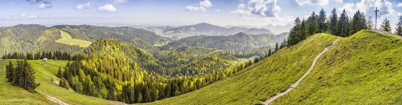 Photo free Vegetation, Ridge, meadow