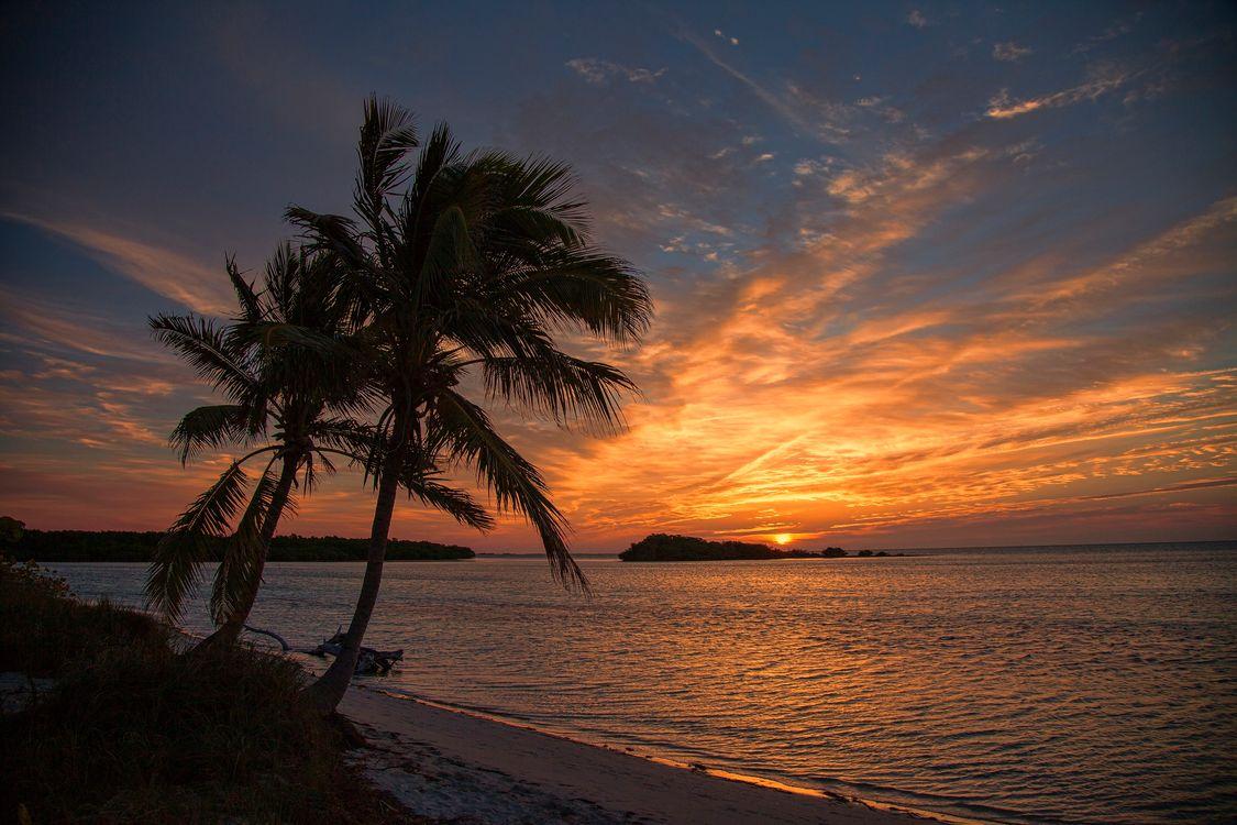 морской закат · бесплатное фото
