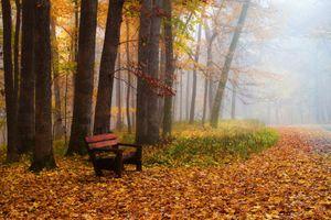 Заставки осень,скамья,парк,лес,деревья,туман,лавочка