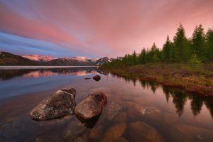 Лес в зеркале воды · бесплатное фото