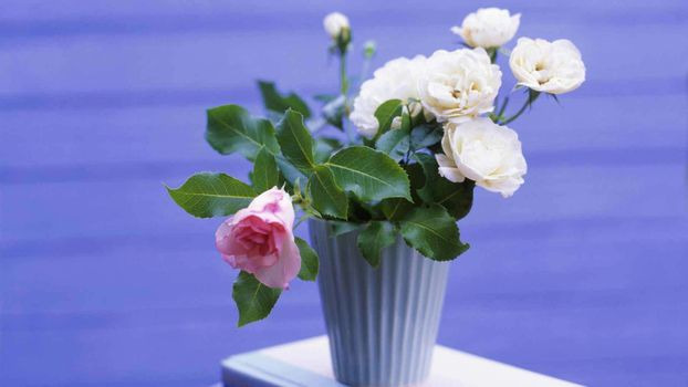 Бесплатные фото ваза,розы,букет