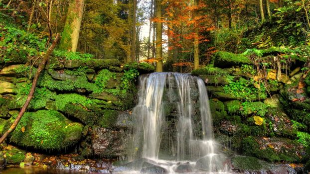 Фото бесплатно падения, пейзажи, мох