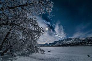 Бесплатные фото лунная ночь,зима,ночь,горы,деревья,сугробы,снег