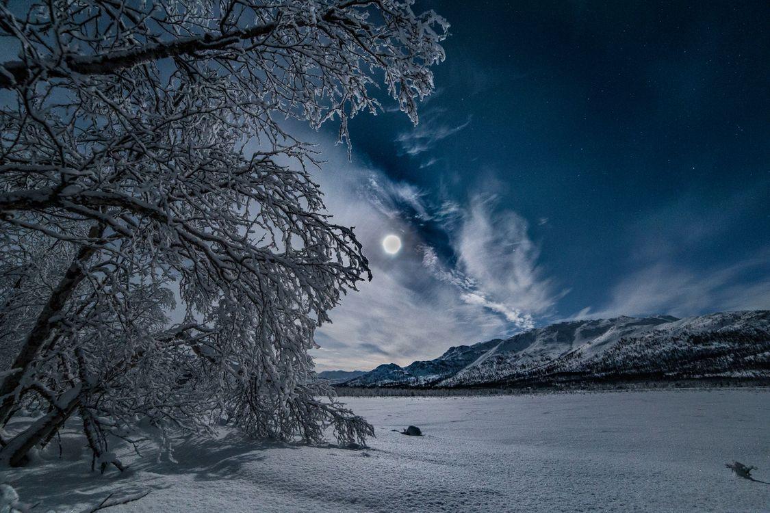 Фото бесплатно лунная ночь, зима, ночь, горы, деревья, сугробы, снег, луна, природа, пейзаж, пейзажи