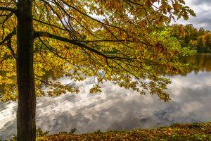 Фото бесплатно Верх Царицынского пруда, осень в Москве, осень