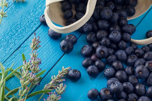 Placer blueberries on blue tablets · free photo