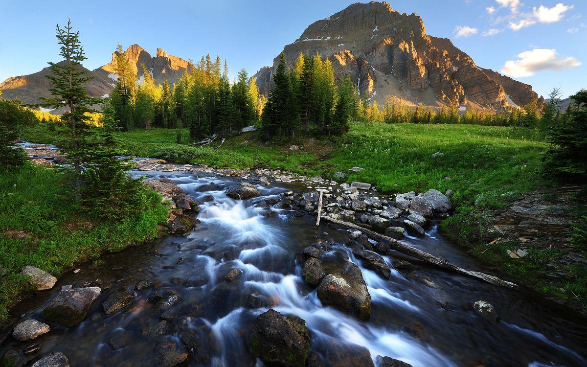 наносятся требуют горы с реками картинки расскажет том
