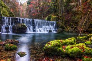 Фото бесплатно пейзаж, осенние цвета, мох