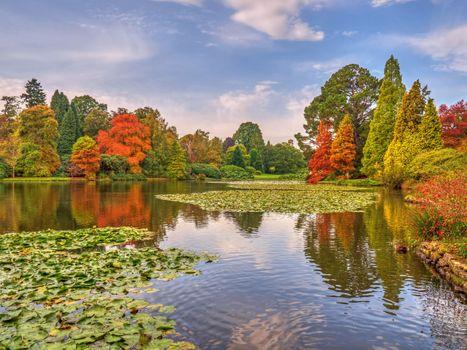 Заставки Шеффилд Парк,Sheffield Park,Англия,Великобритания,осень,пруд,парк,пейзаж