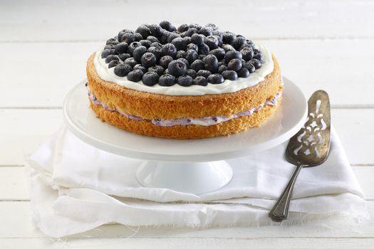 Photo free tray, cream, cake