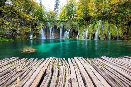 Фото бесплатно Хорватия, дорожки, деревья