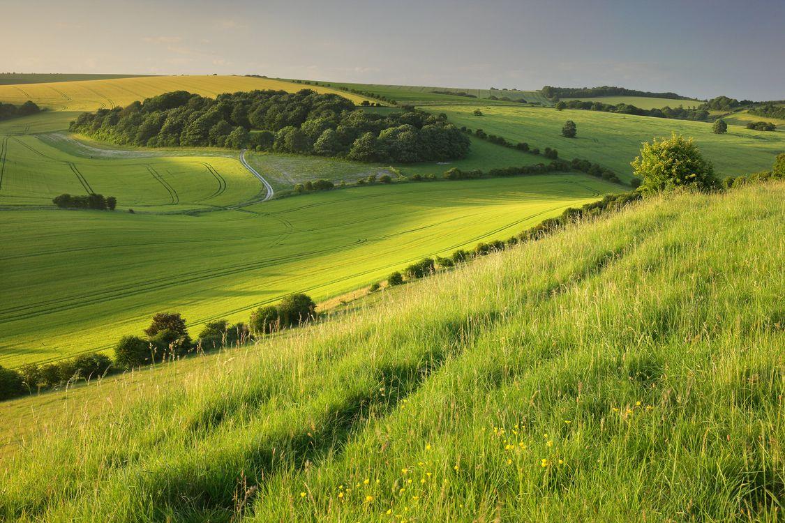Фото бесплатно поля, холмы, трава - на рабочий стол