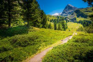 Бесплатные фото Умхаузен,летняя тропа,Тироль,Австрия,Umhausen,горы,деревья
