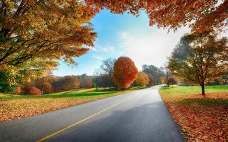 Фото бесплатно осень, облака, цвета